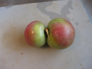 his and her apples (two stuck together)