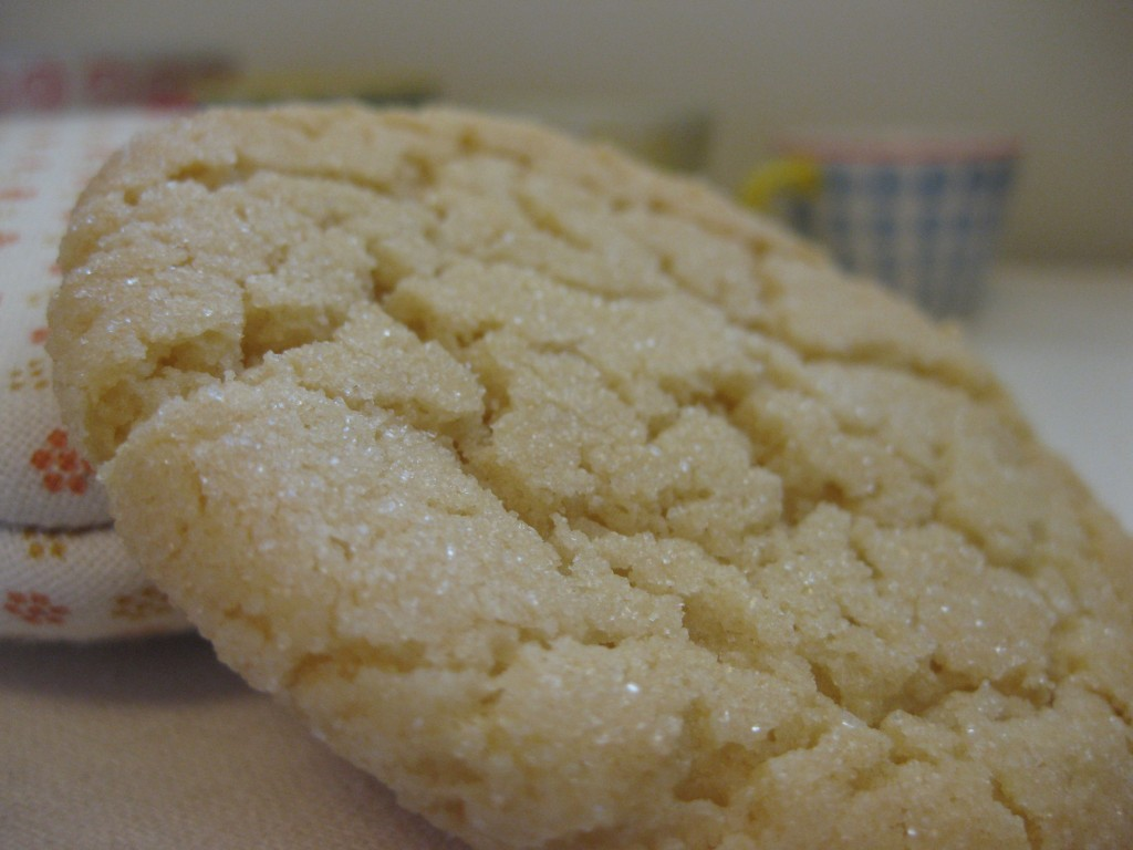 close up cookie